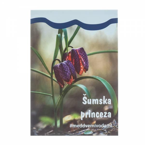 Blokić - Šumska princeza