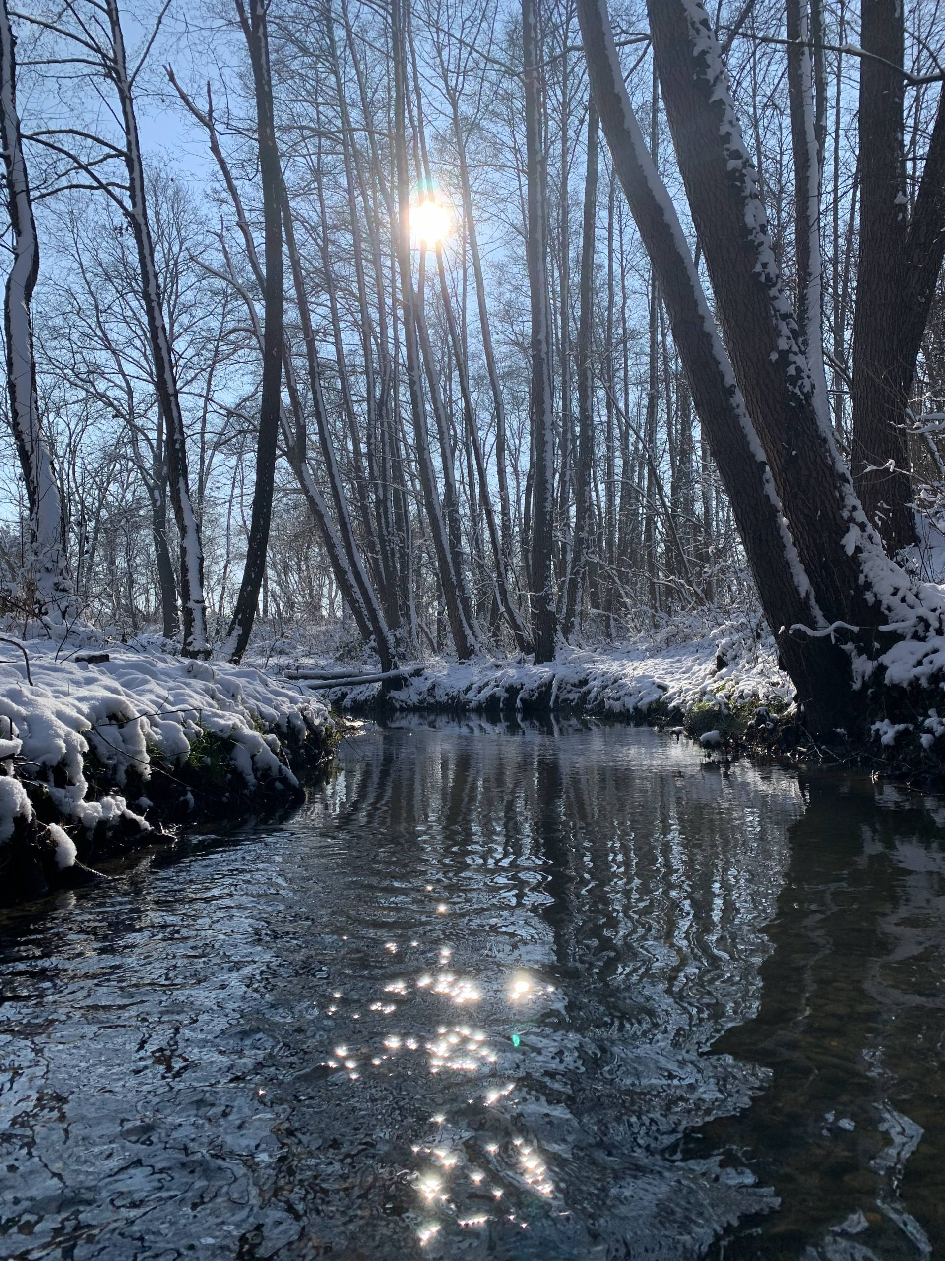 Fotografija mjeseca veljače, Autor Boris Zadravec
